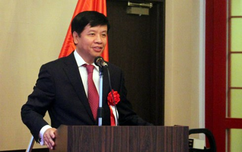 Japanese firms seek investment opportunities in Da Nang city
