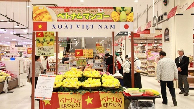 First Cat Chu mangoes hit shelves in Japan